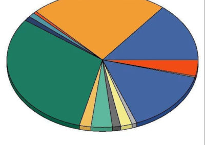 Grafico dati vendita tramite APP su smartphone